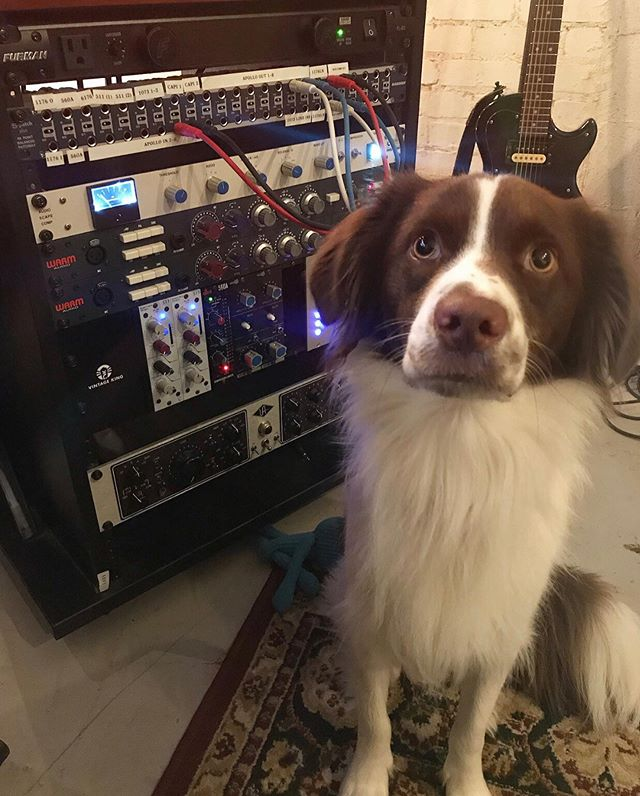 My mix assistant for the day.