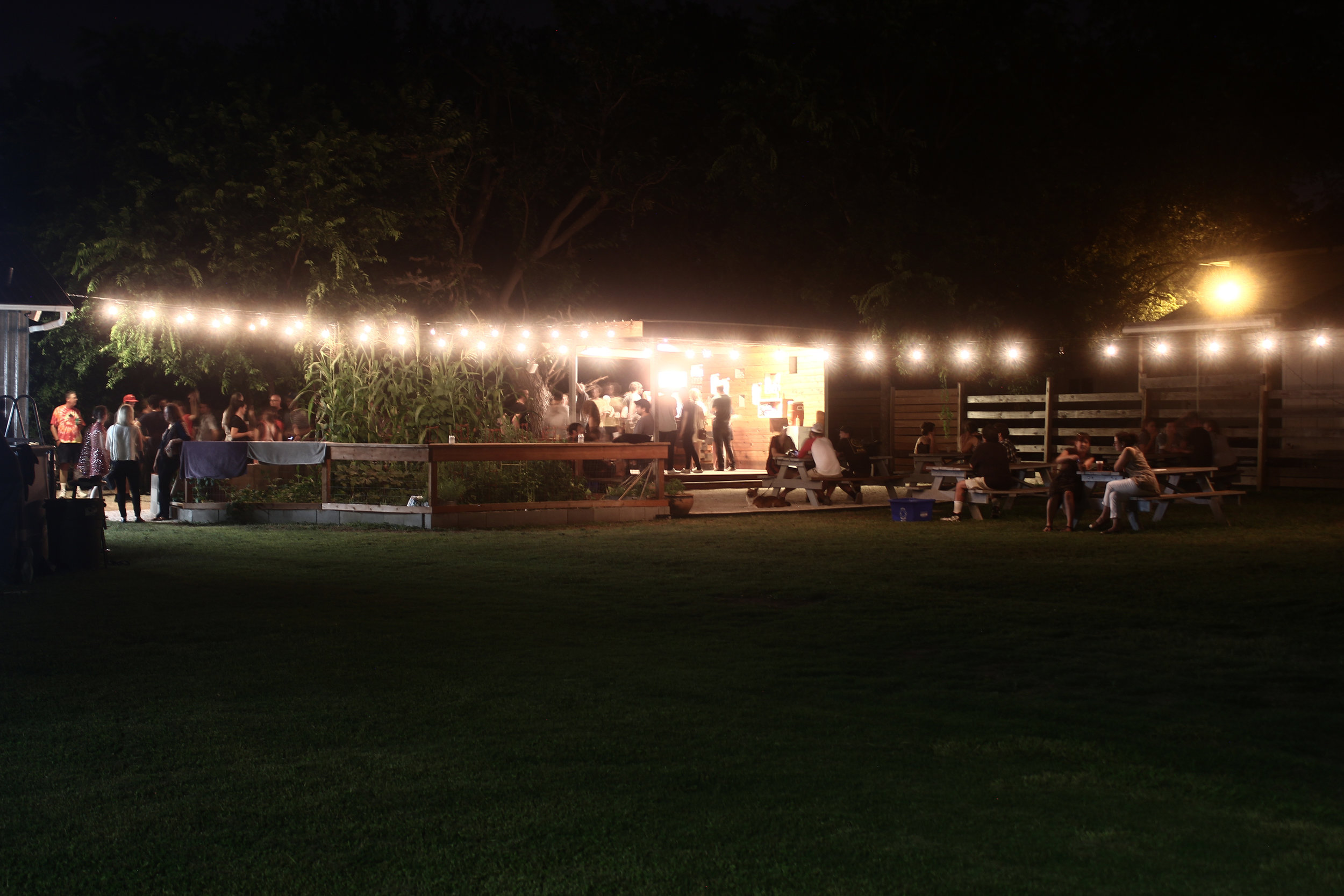 yard at night 2.JPG