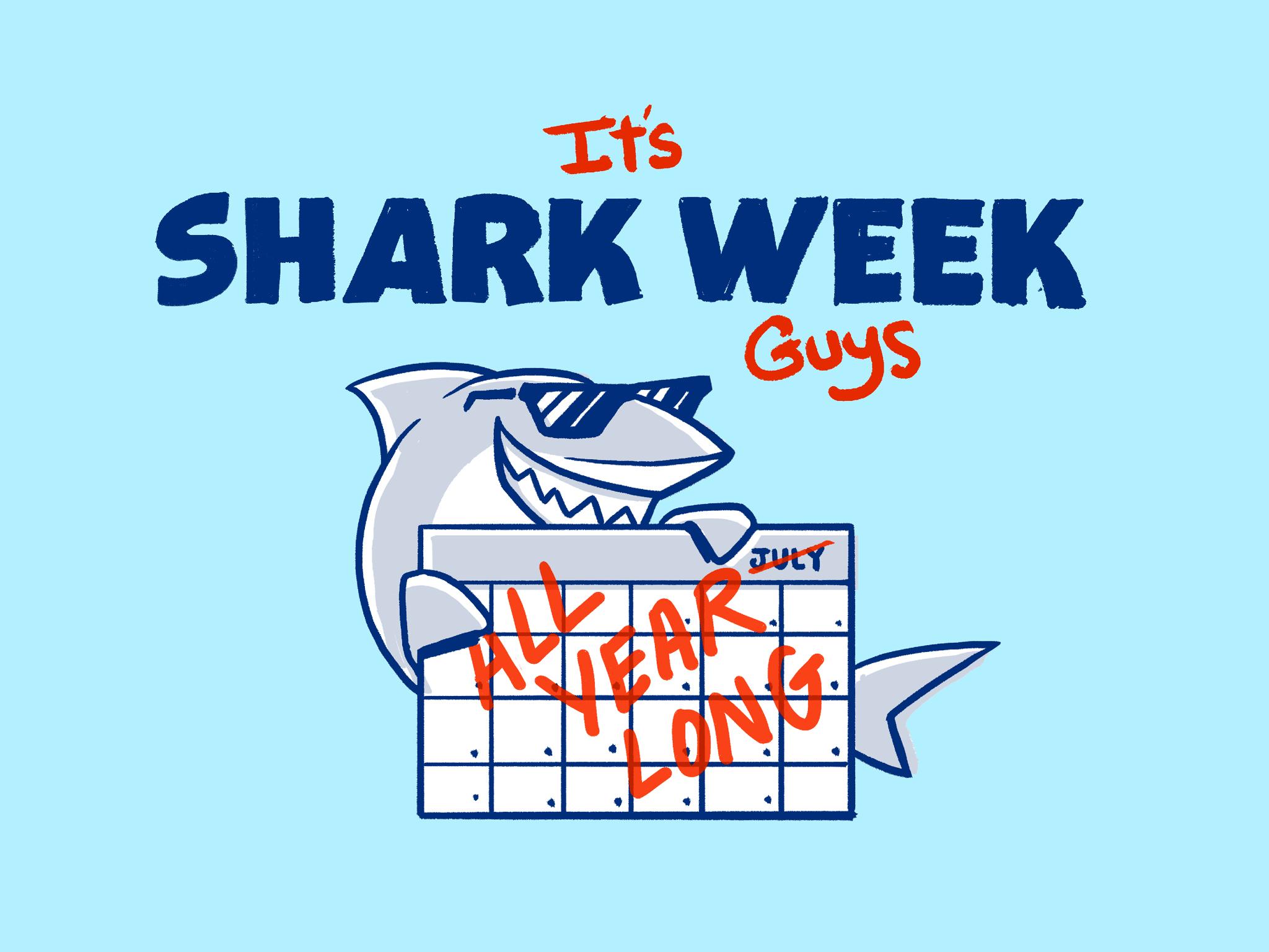 Pilot_Shark_Week_21.jpg