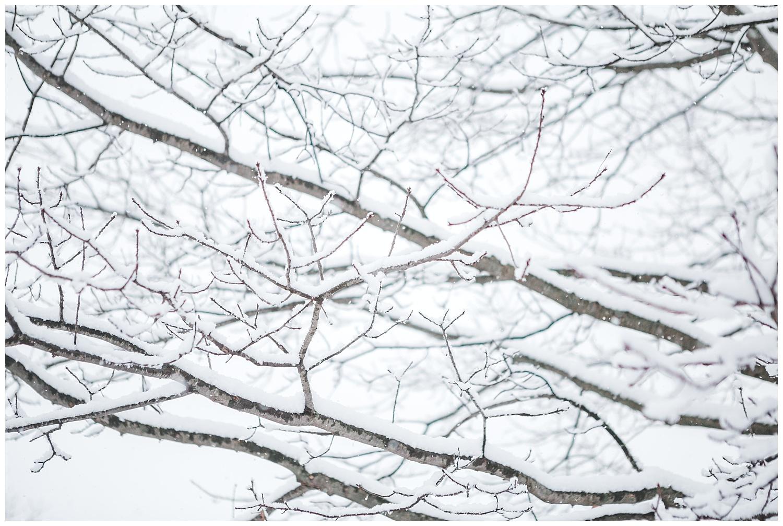 IMG_9807_Snow Day - blog.jpg