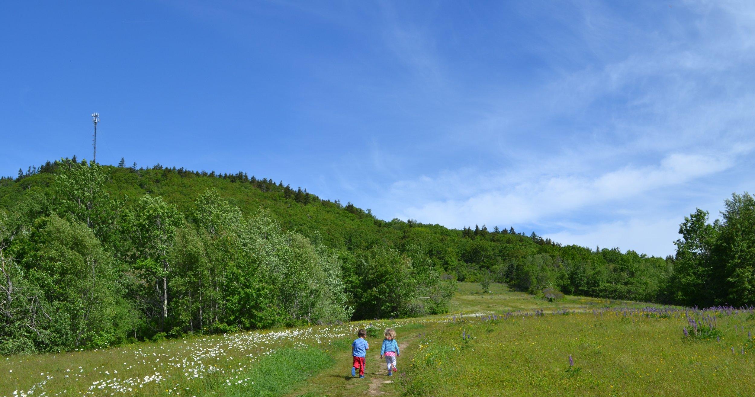 Town-of-Blue-Hill-kids-running-up-Blue-Hill-Mountain-BHHT.JPG
