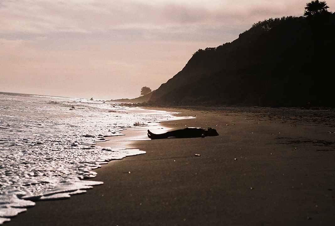 Cassandra on beach in wetsuit.jpg