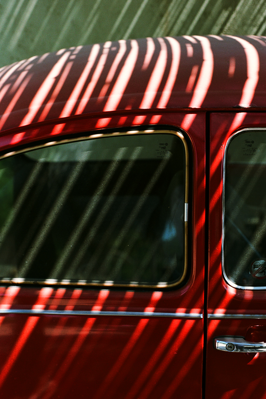 Mazunte red beetle_0017.jpg