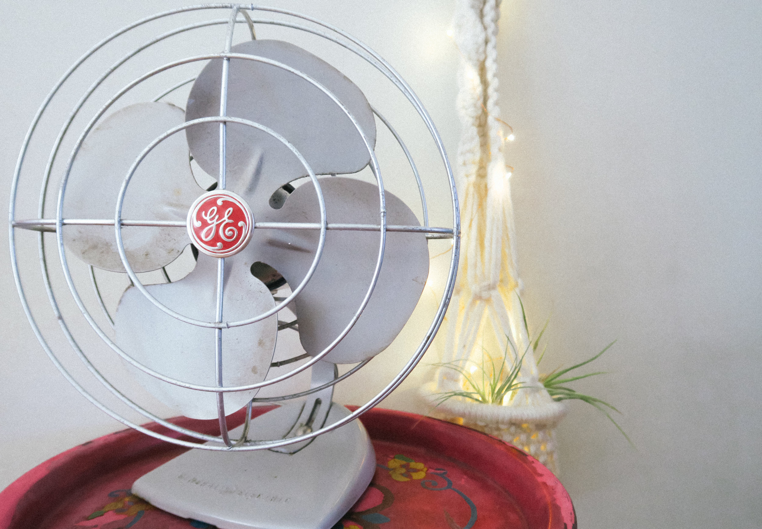 vintage GE fan from  lounge lizard, macrame plant hanger from the  garage sale warehouse