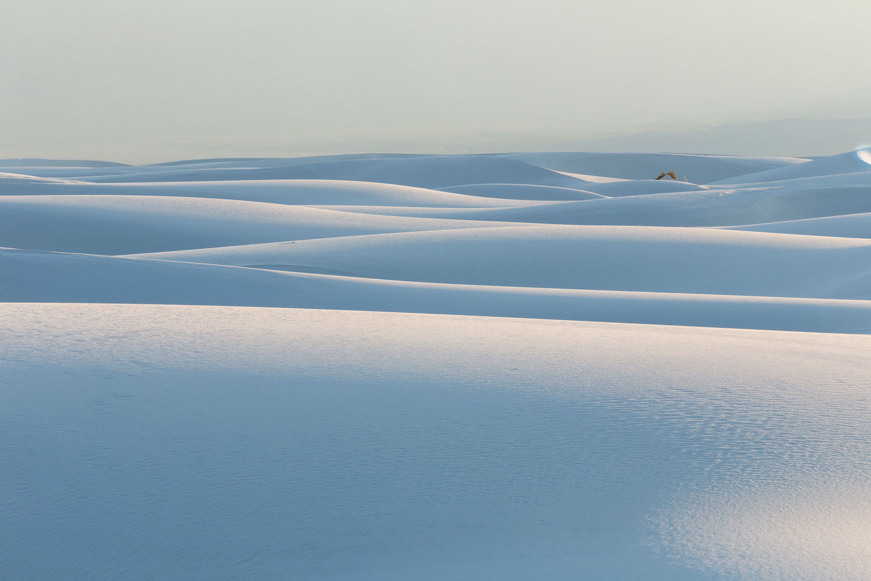 White Sands #26