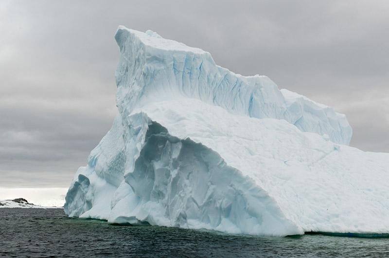 Iceberg. Arctowski Peninsula, Antarctica