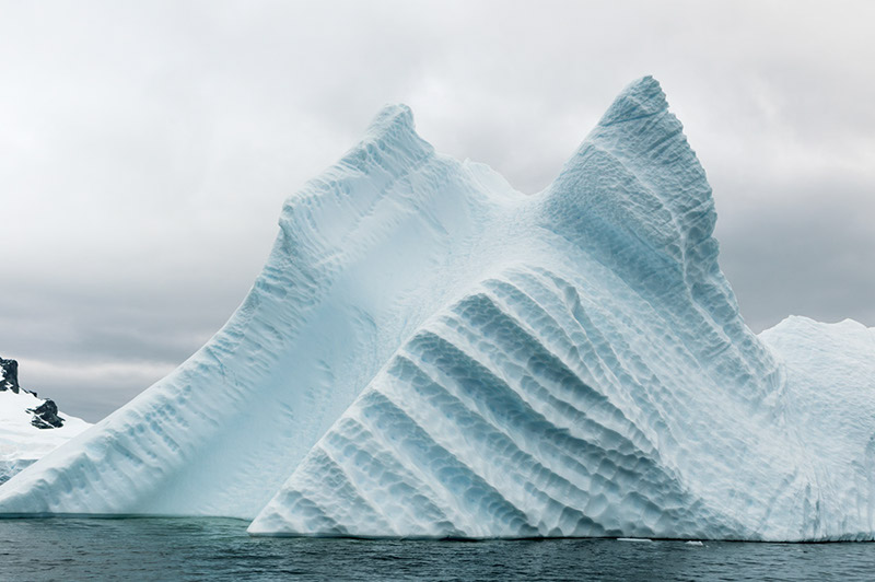 Ice Fins. Arctowski Peninsula, Antarctica