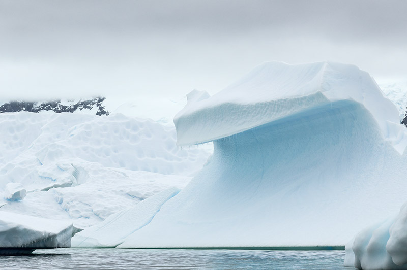 Ice Wave. Arctowski Peninsula, Antarctica