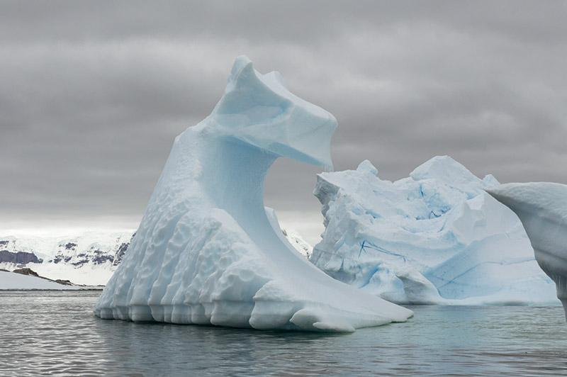 Sculpted Icebergs. Arctowski Peninsula, Antarctica