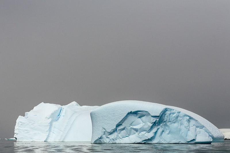 Icebergs in the Fog. Dallmann Fjords, Antarctica