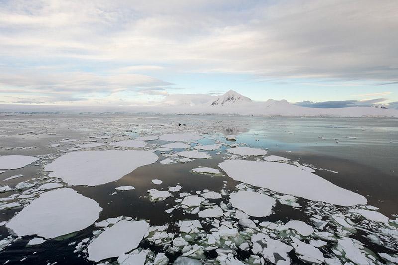 Fractured Ice and Mount William. Anvers Island, Antarctica