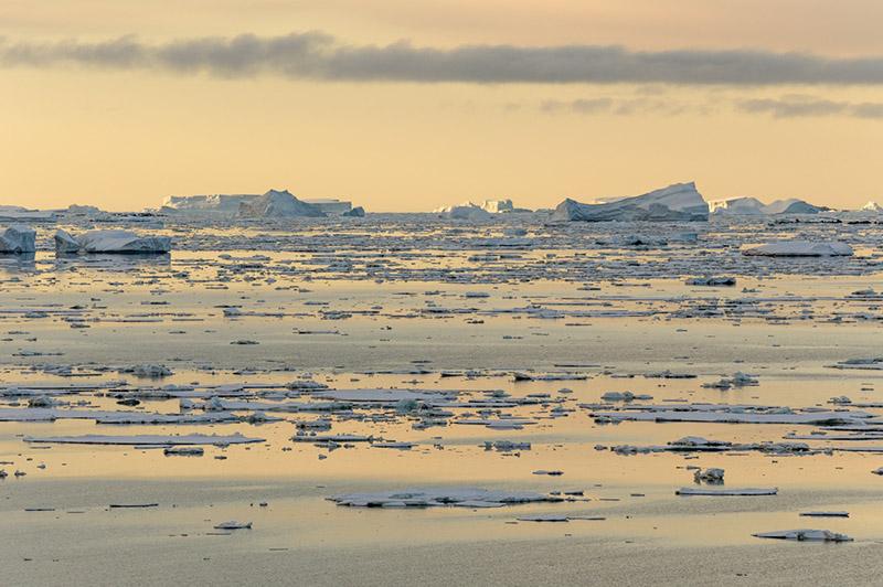 Late Light on Sea Ice near Anvers Island. Antarctica