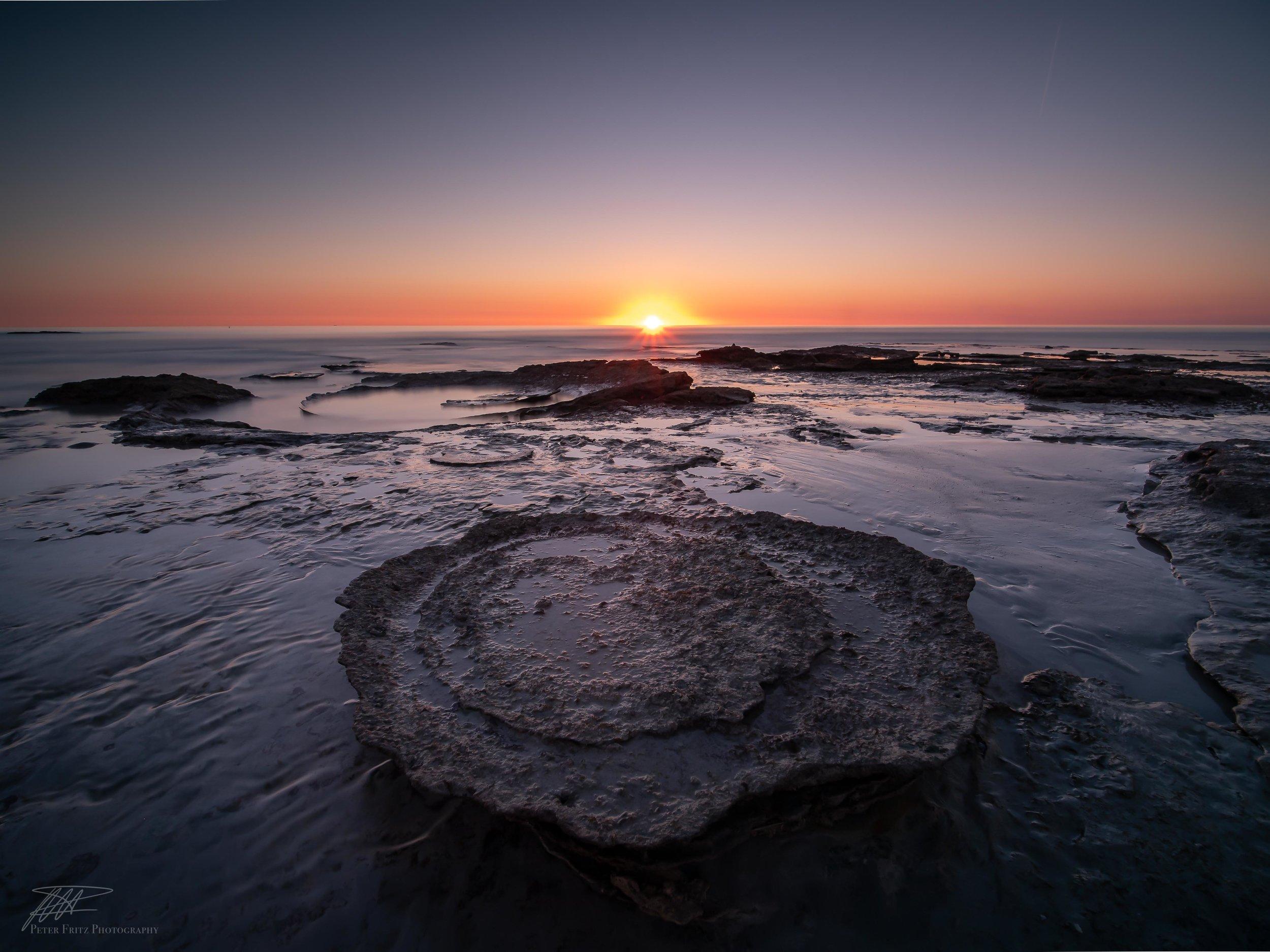 Rock pools mushroom.jpg