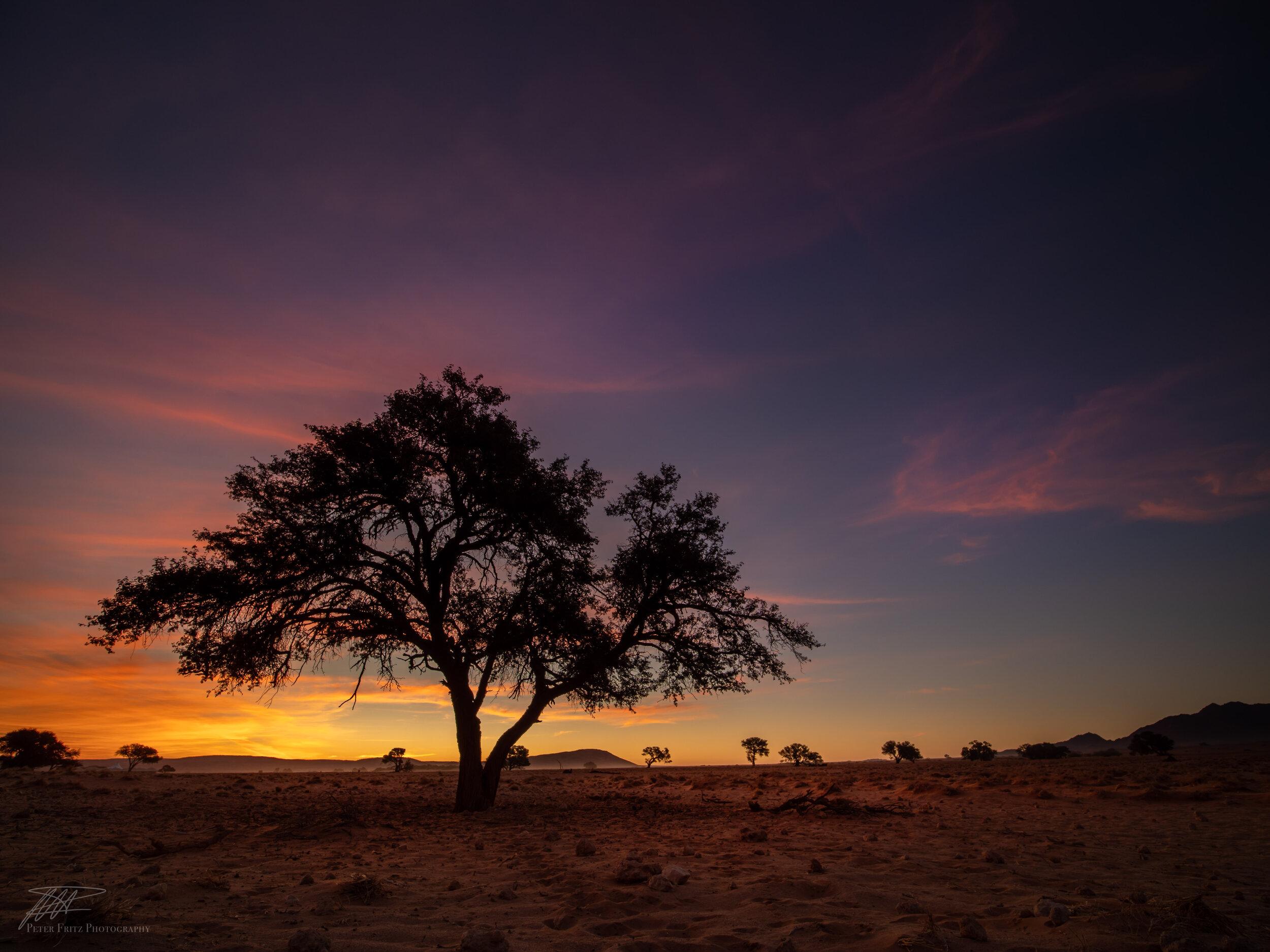 African Sunset 4x3 web.jpg