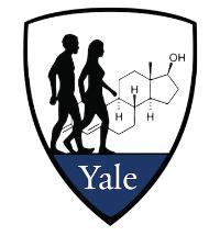 Logo Large copy.png