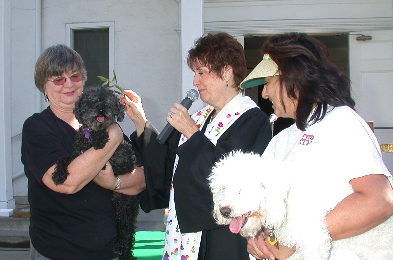 DSCN2461 blessing of animals.JPG