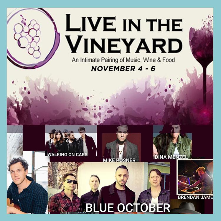 Live in the Vineyard Brendan James