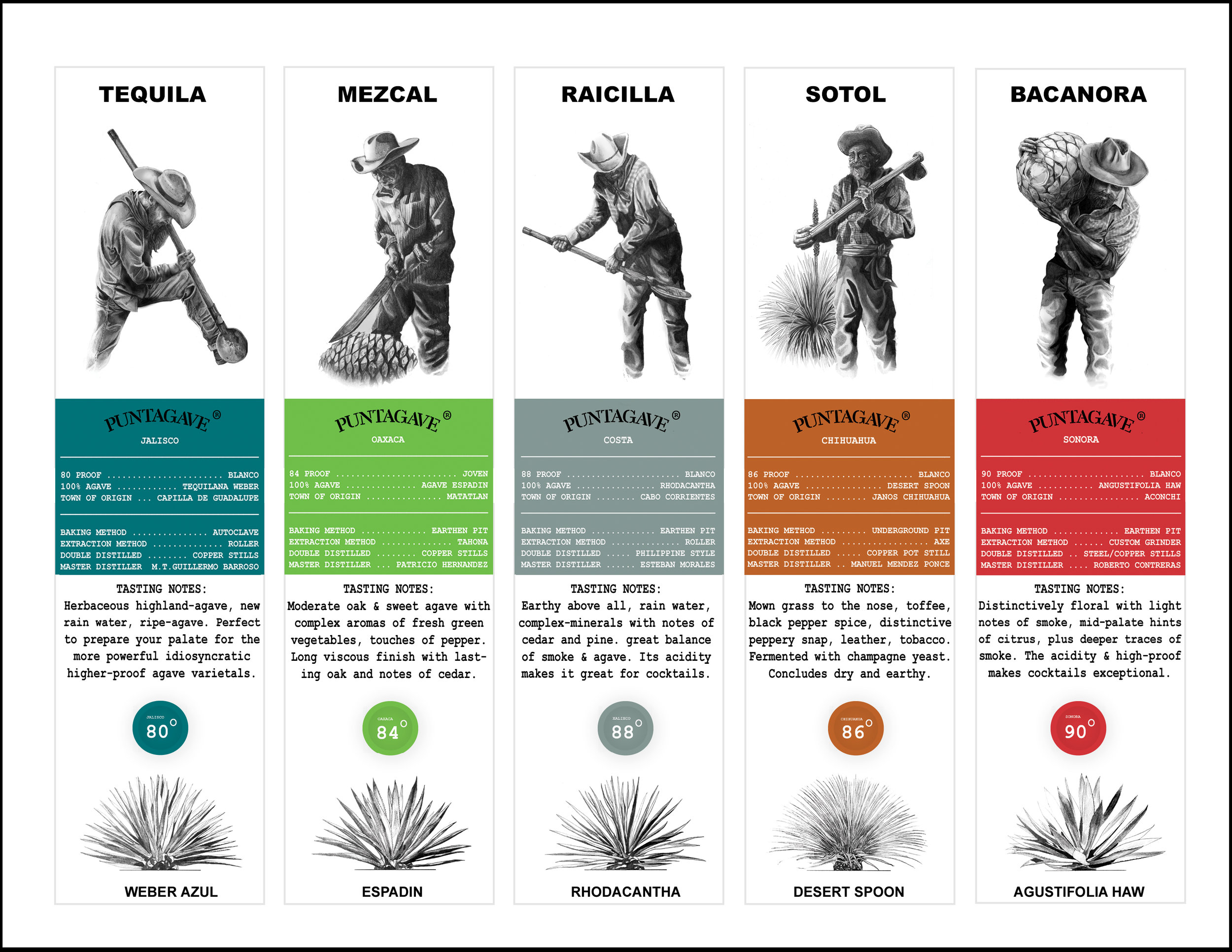 PUNTAGAVE SALES SHEET FRONT 2nd edition copy.jpg