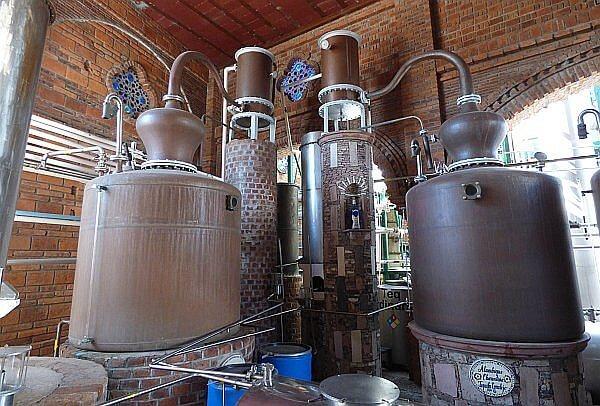 corralejo-distillation-600x406.jpg