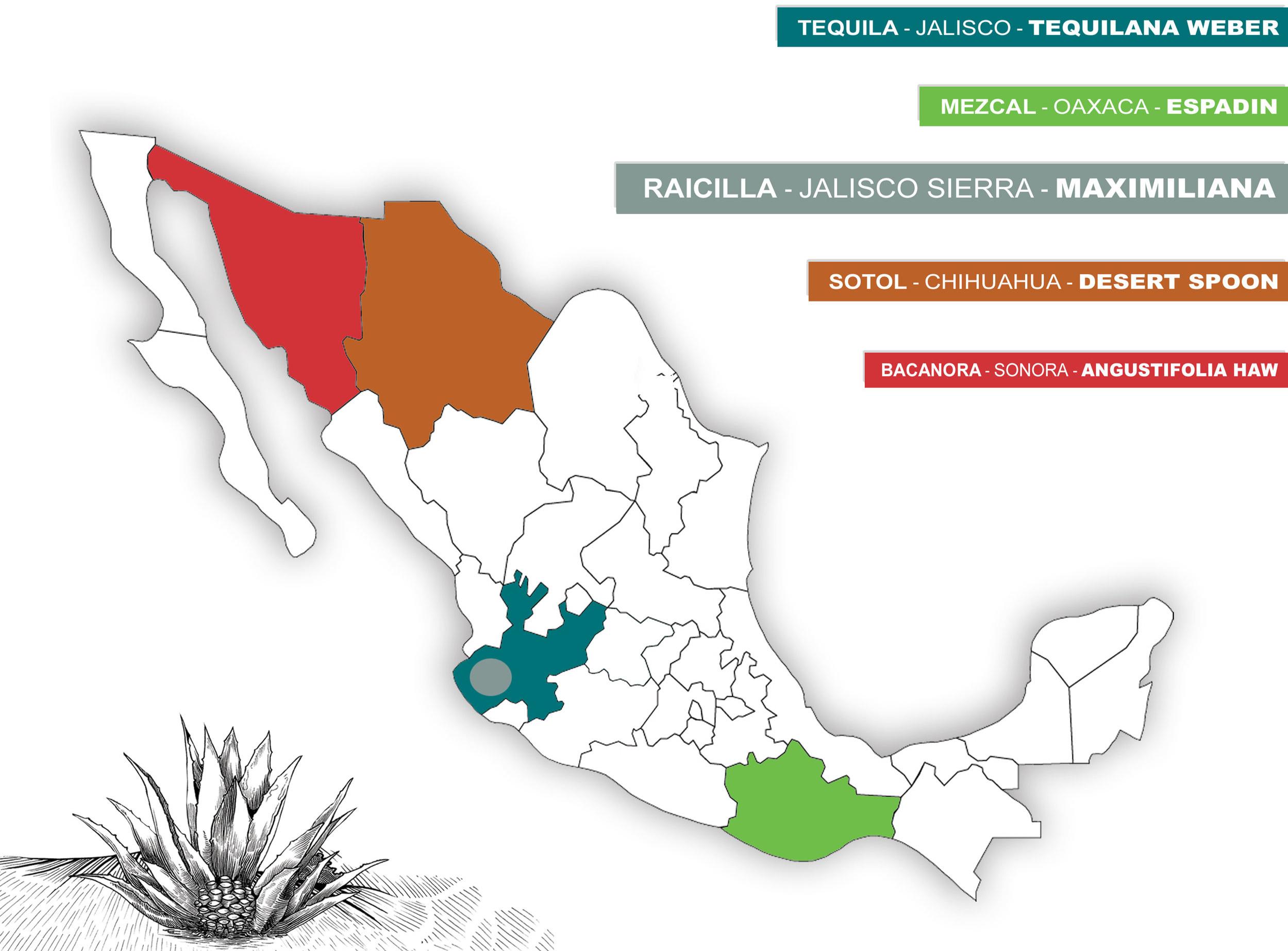 MAP+SINMARCO+5.jpg