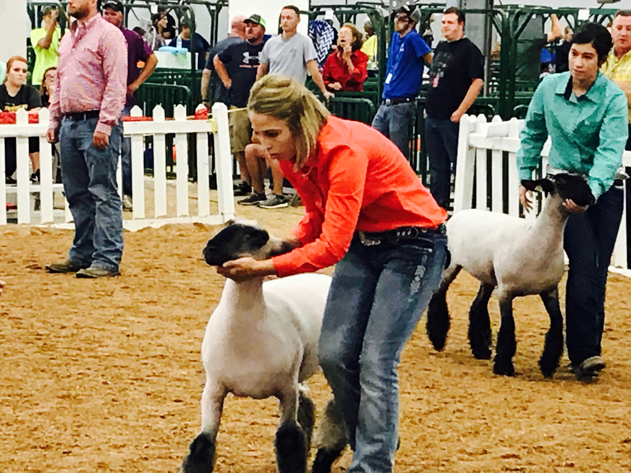Claire and her lamb at the Indiana State Fair