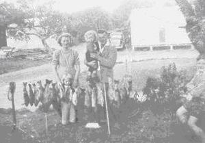 Fishing haul in 1950's