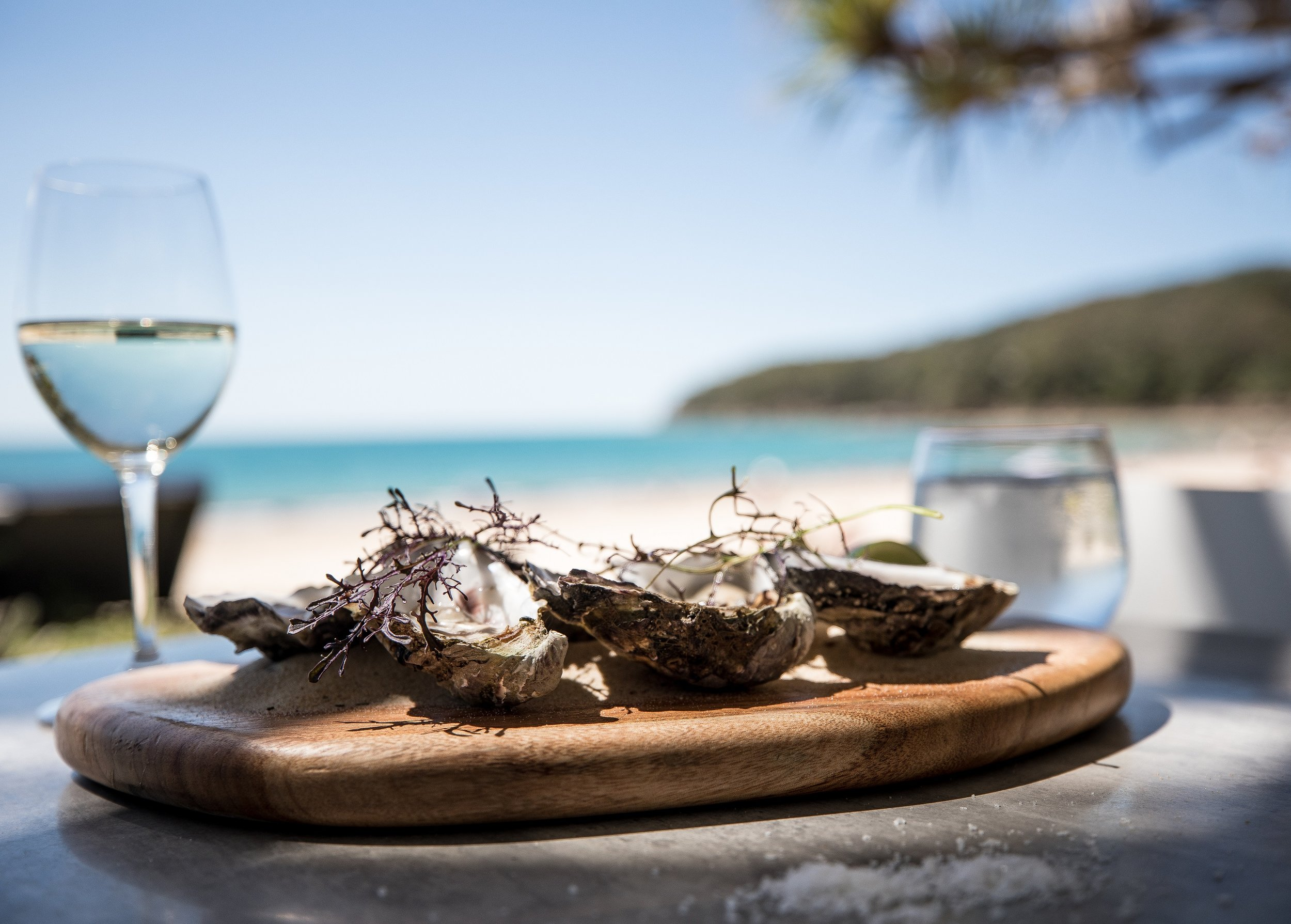 STARTER_OYSTERS_VIEW - half size.jpg