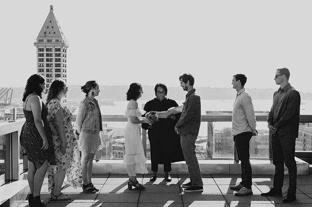It's Trapinch Community Day and I caught six shinies. So like, hmu for trades 😉  6141 2905 5612 #trainercode #trapinchcommunityday  #shinypokemon . . . . . #blackandwhite #slateandivory #seattlecourthousewedding #seattlemunicipalcourt #smithtower #smithtowerseattle #skyline #wedding