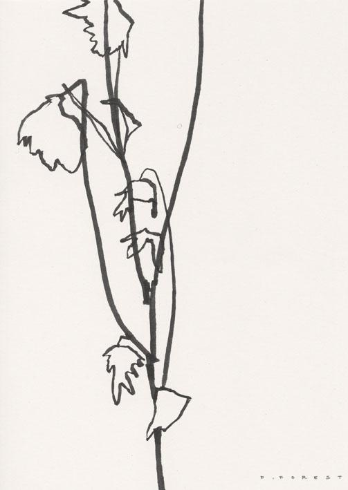 FForest_Drawing_Flowers#19.jpg