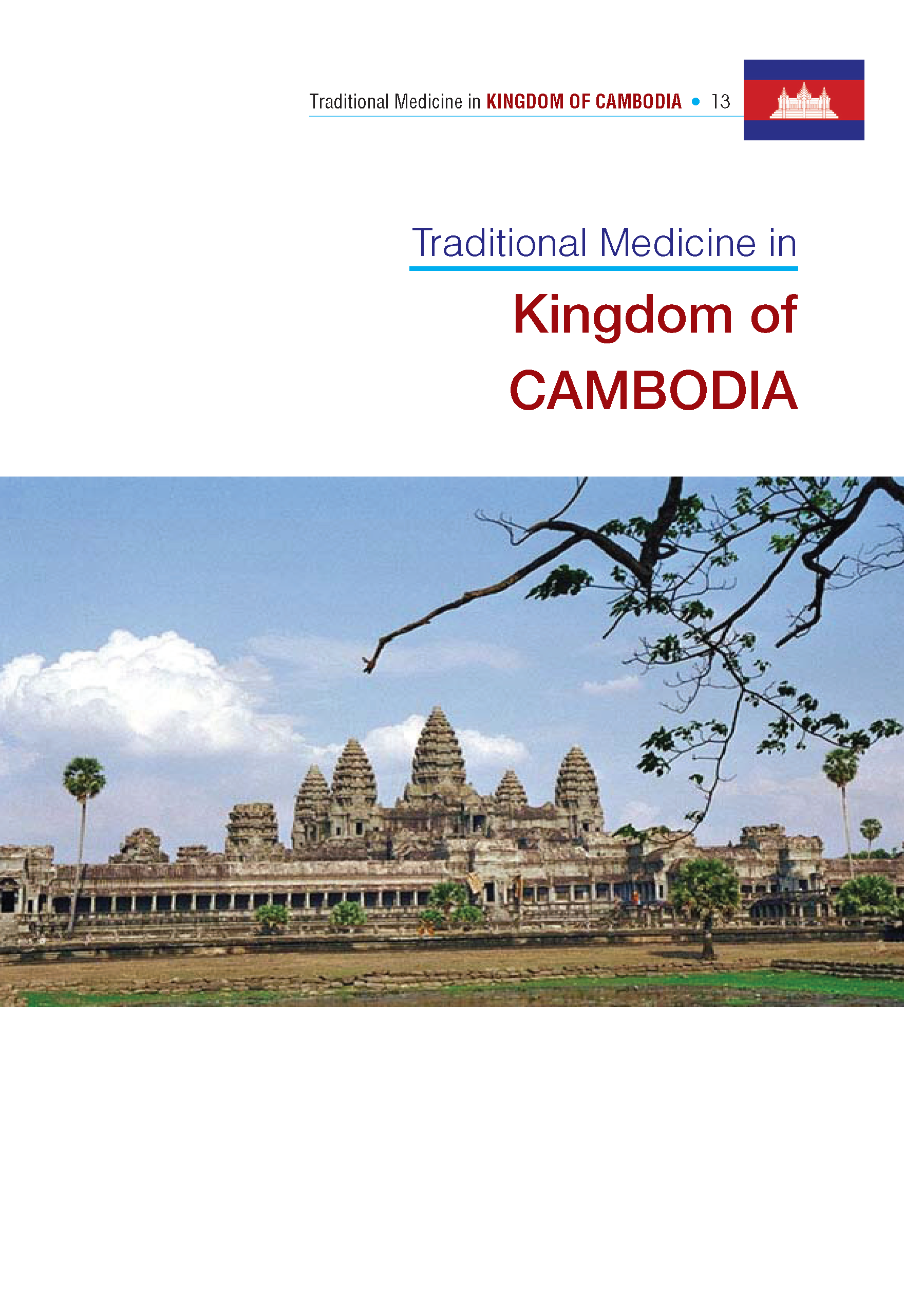 Traditional.Medicine.Cambodia_Page_01.png
