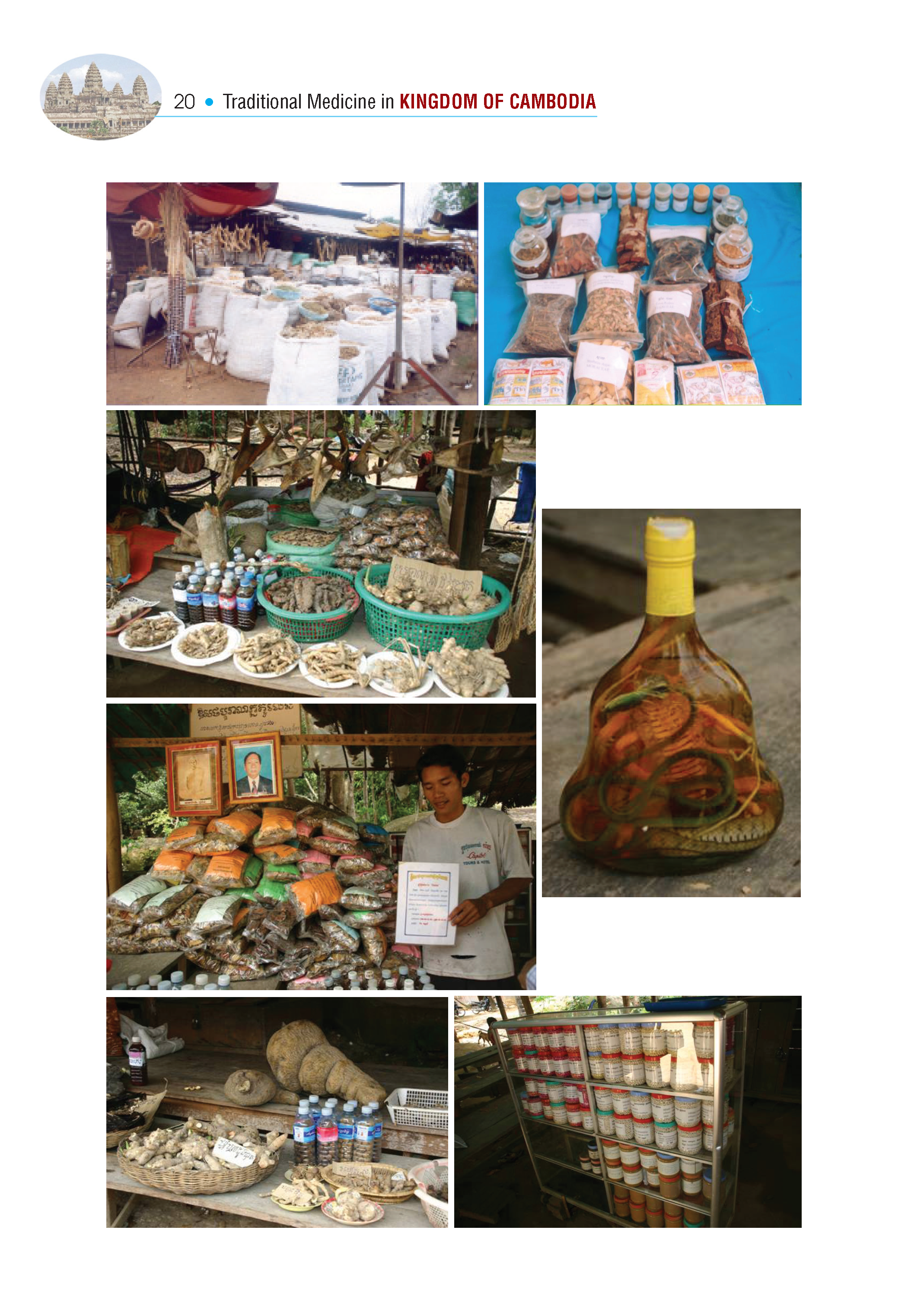 Traditional.Medicine.Cambodia_Page_08.png