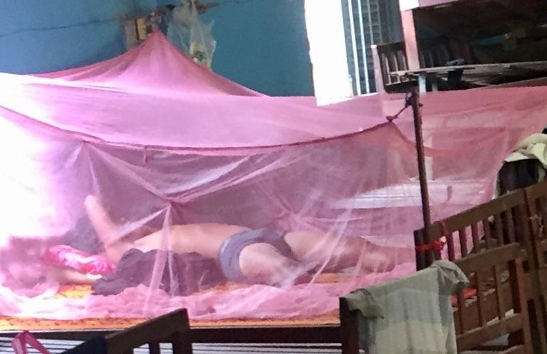Quad Amputee Needs a Mosquito Net