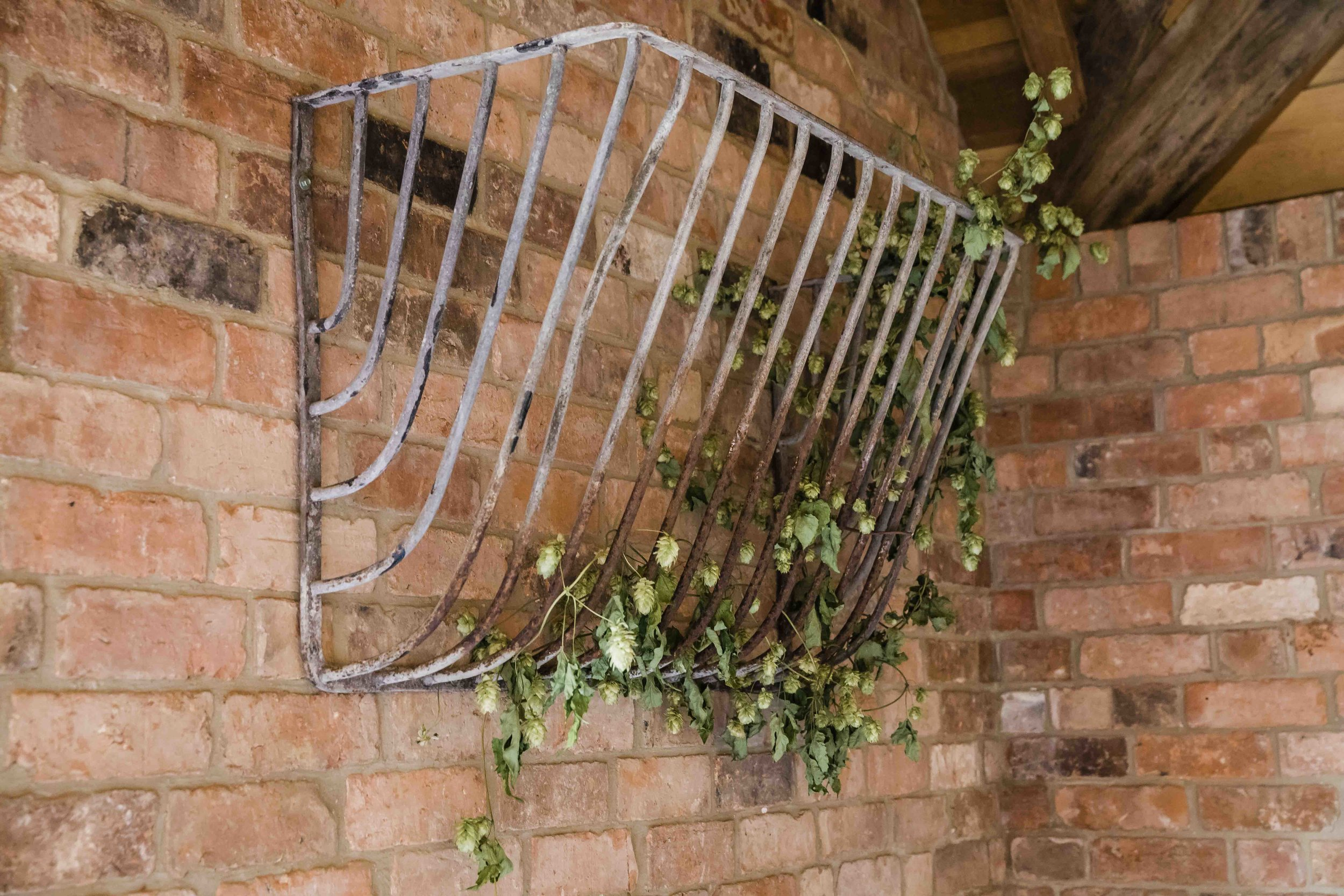 Hayrack with ivy for web.jpg