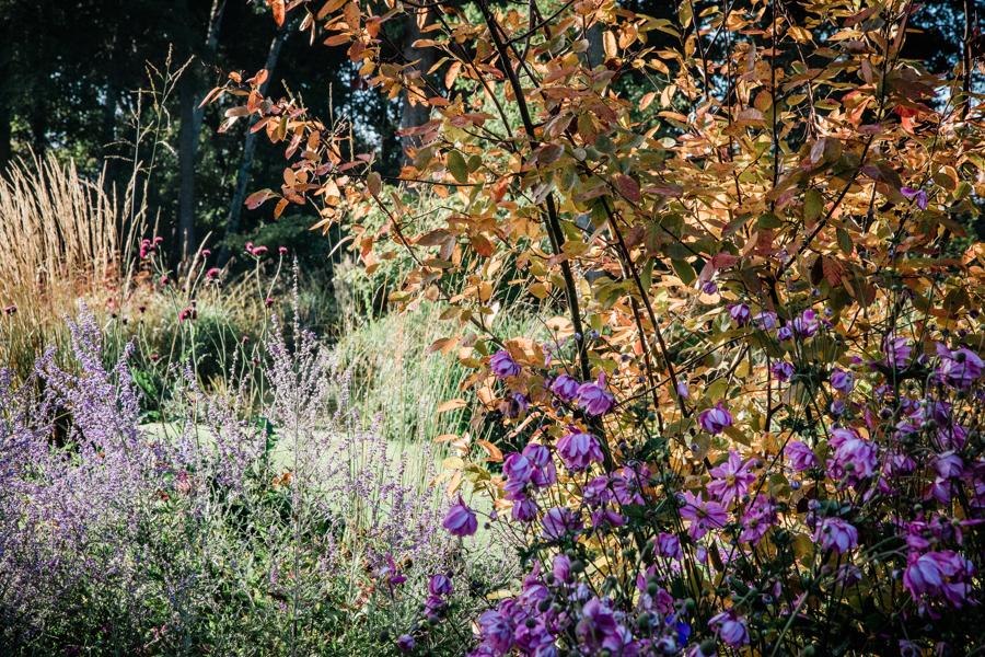 Hanley Hall Wedding venue gardens.jpg