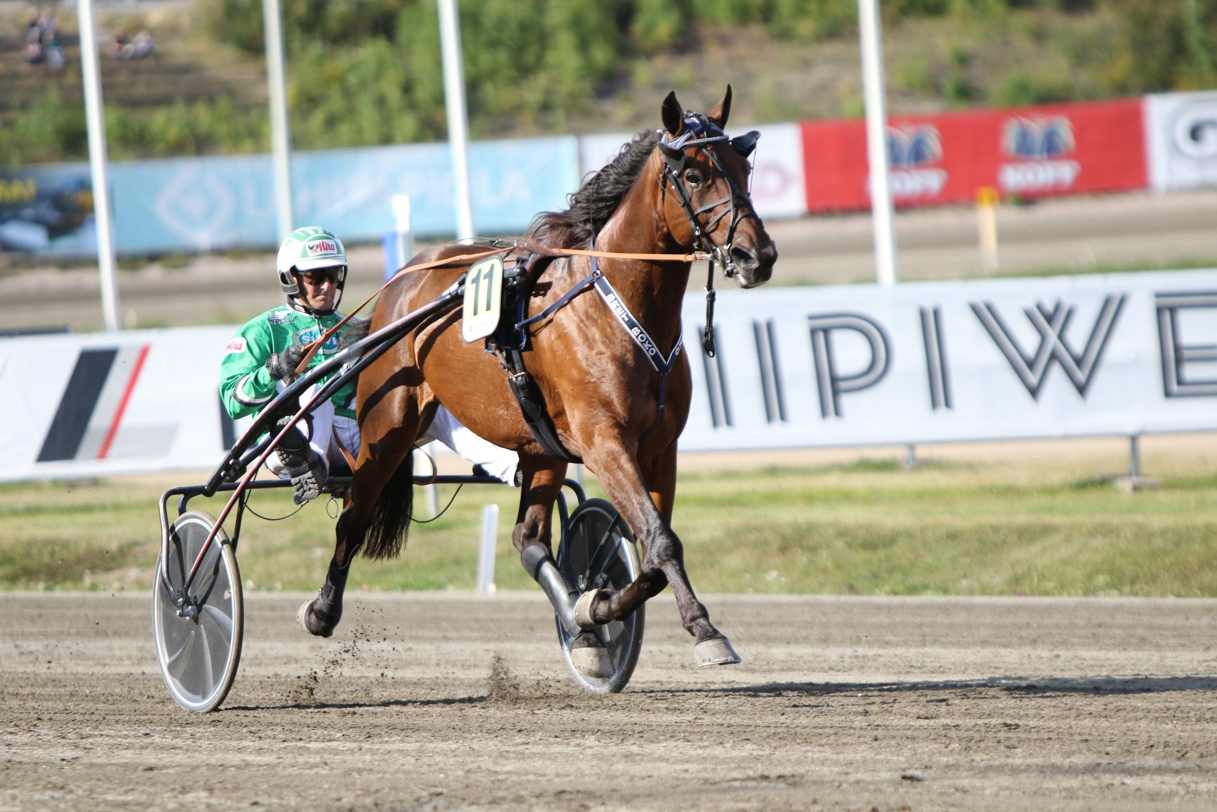 Ari Moilasen ohjastamasta Bret Bokosta on povattu mestaruussuosikkia jo ennen Kavioliiga-kauden alkua. Urheilutoimittajain liiton puheenjohtaja Kari Linna kuuluu hevosen osaomistajiin.