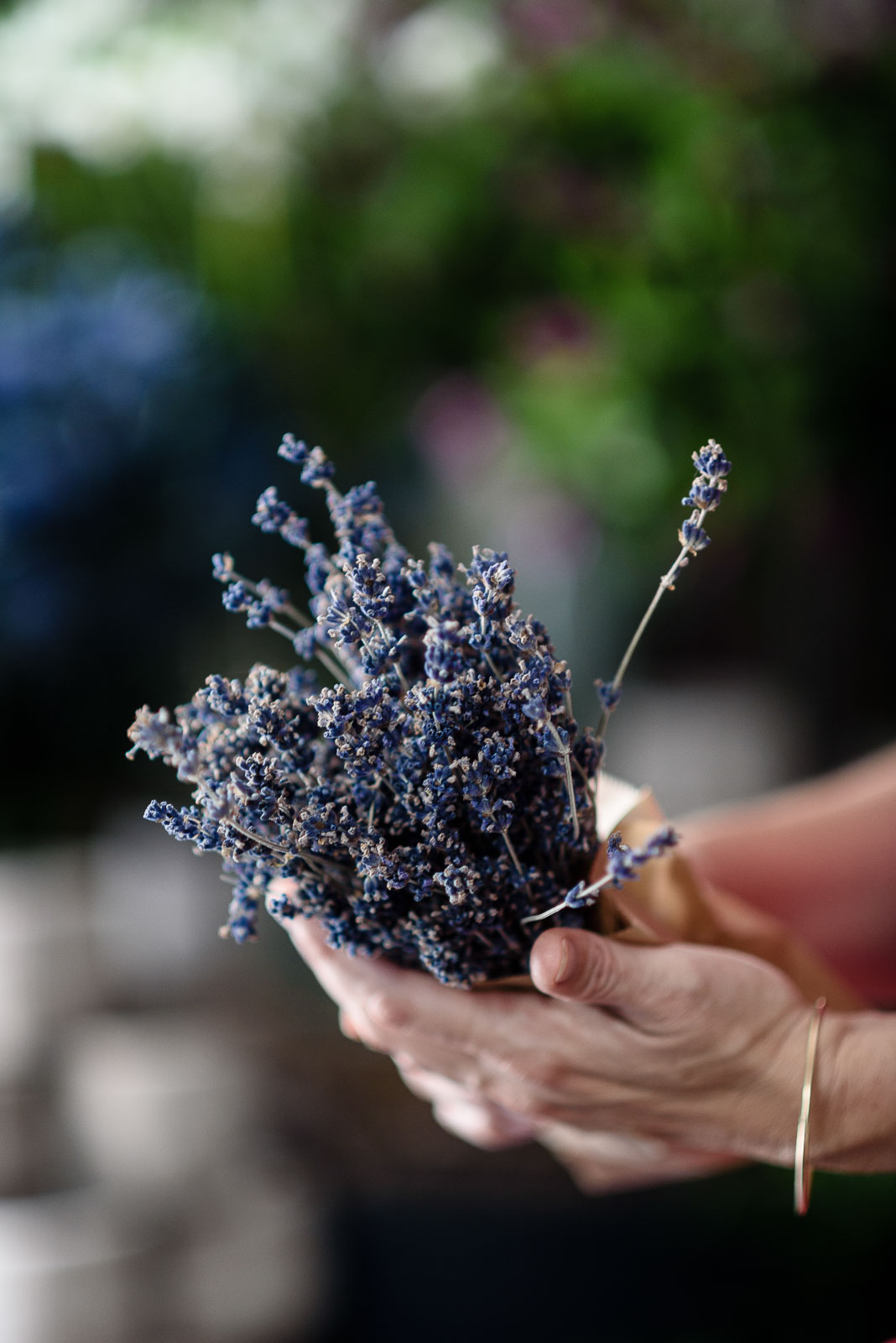 Lavender from provence.jpg