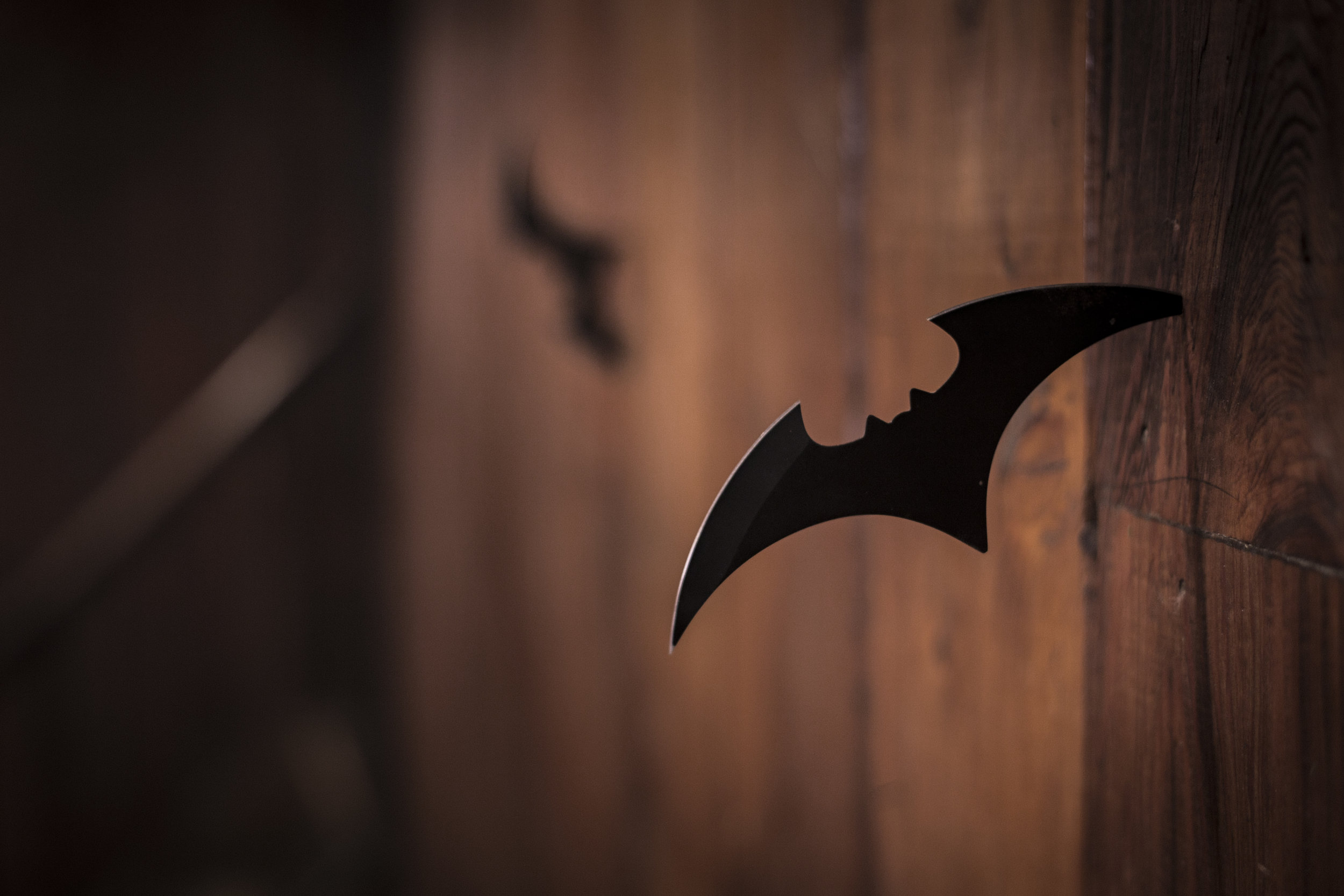 Was a cutout of a bat the closest we were ever going to get?