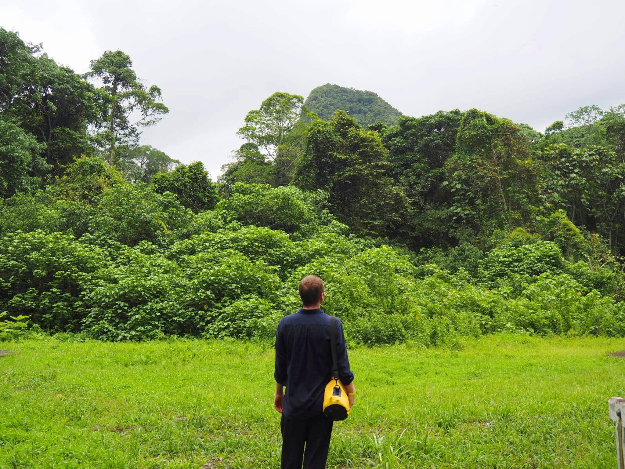 Vincent at Mulu 2 Mulu National Park Sarawak Malaysia.jpg