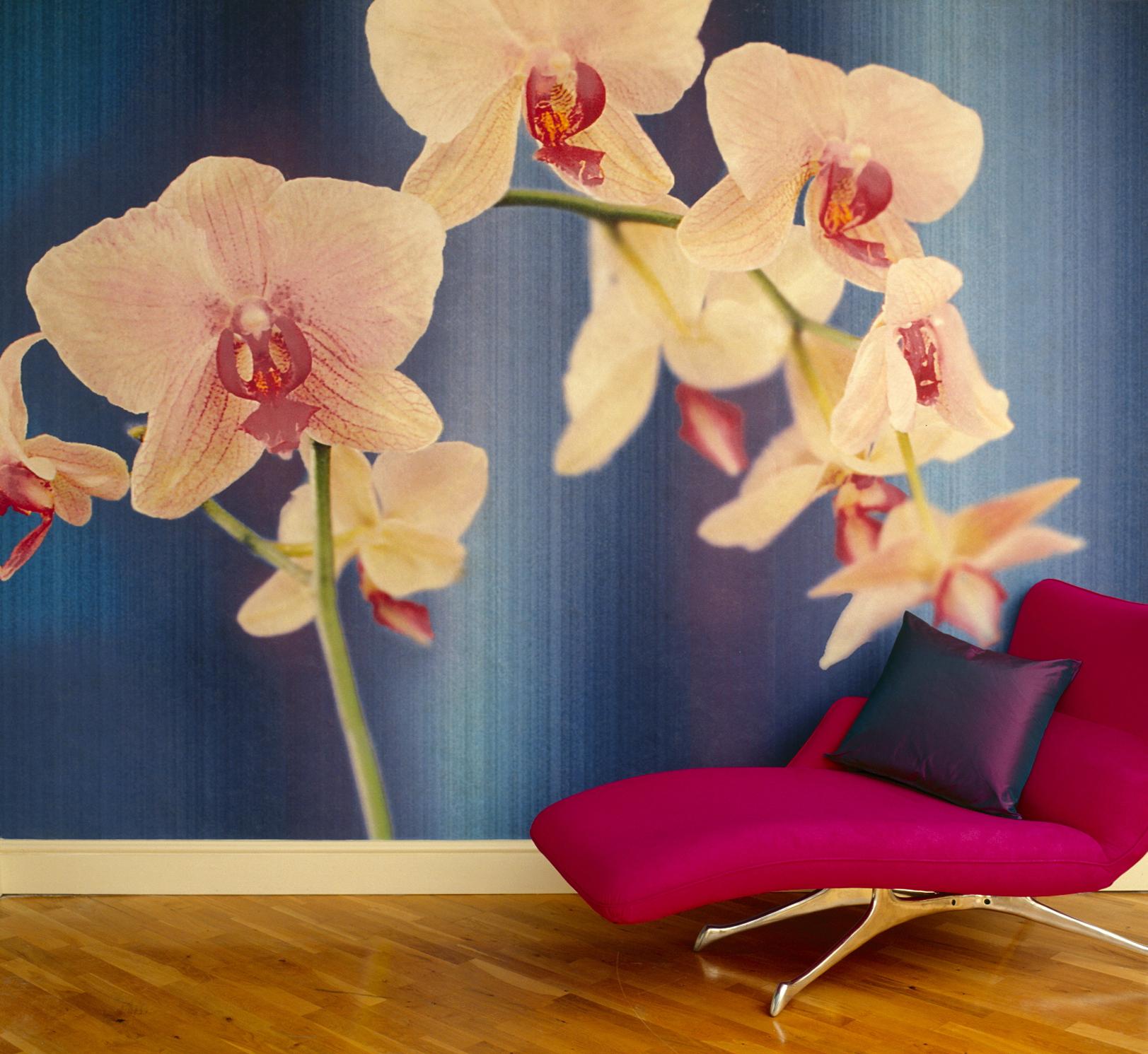Magenta Orchid Room Set.jpg