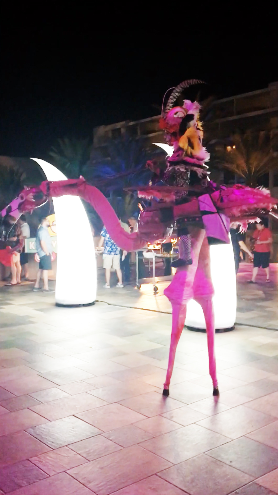 flamingo_lady.jpg