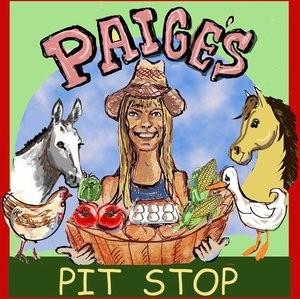 Paige's Pit Stop.jpg