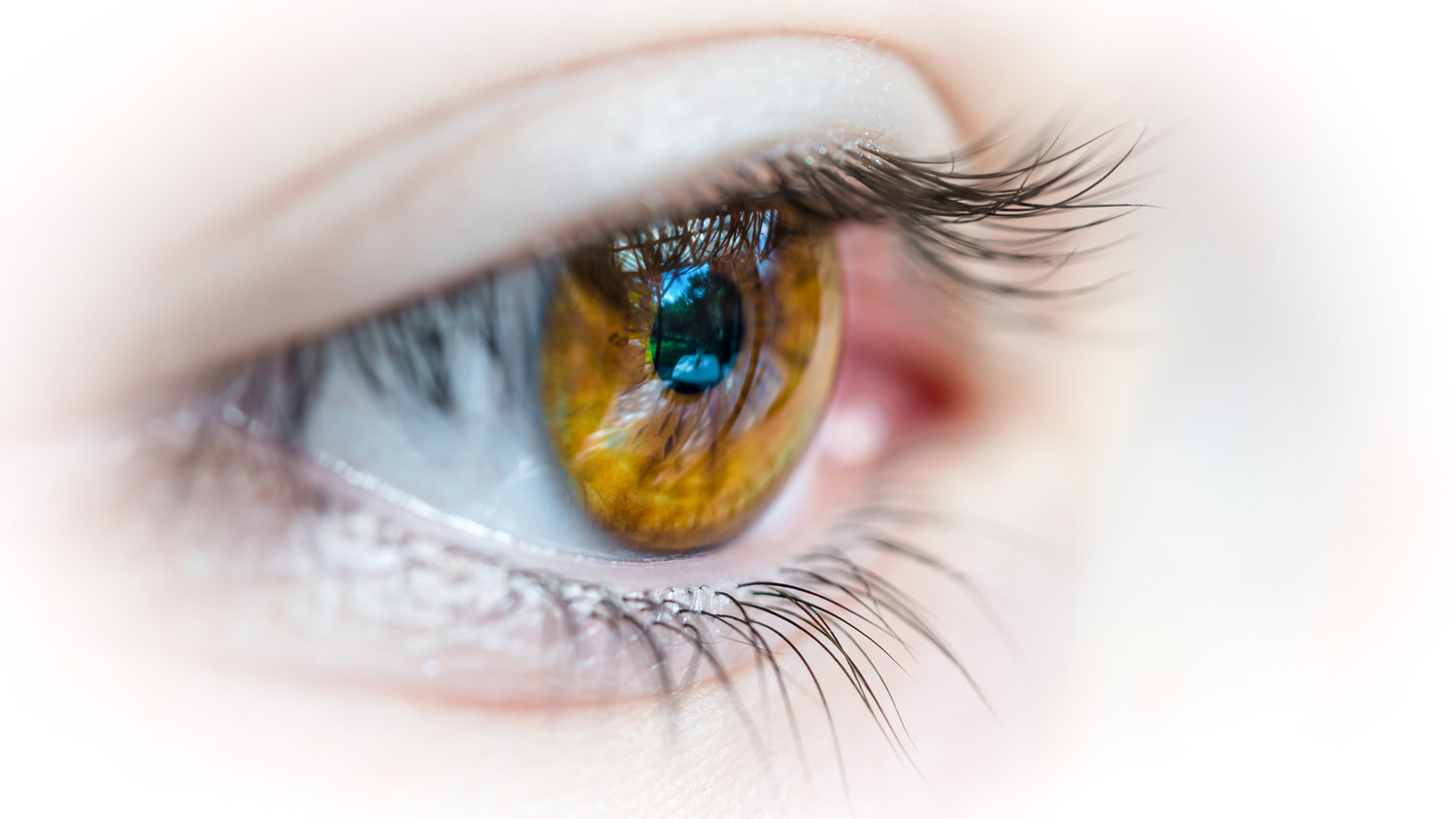 Contact Lenses - We specialize in contact lens fits, including: disposable lenses, contact lenses for astigmatism, bifocal and monovision contact lenses, gas permeable (rigid) contact lenses, colored contact lenses, and more!