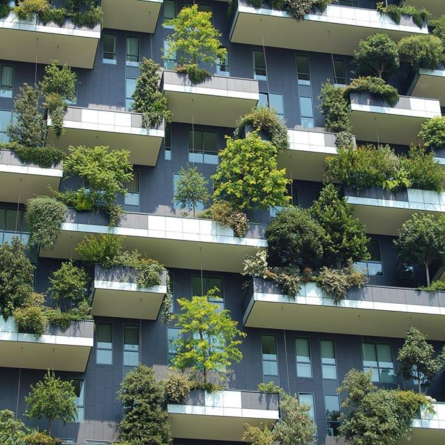 Vertical urban gardens are on the rise world-wide. They help purify the air and are great for insulation. Because #GreenIsGood