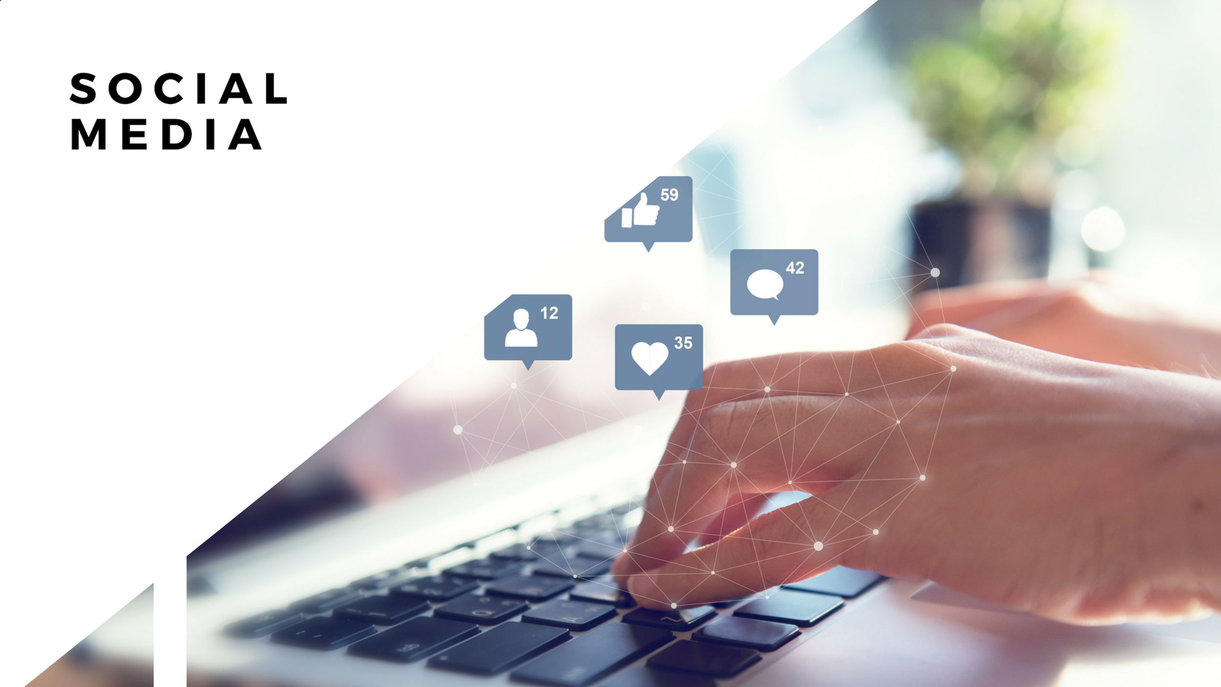Reach and engage with your audience wherever they are.  We understand the power of social media and know how to turn likes and shares into real action (we're talking ROI folks!)  · Strategy · Content & Community Management · Social creative · Paid · Influencers