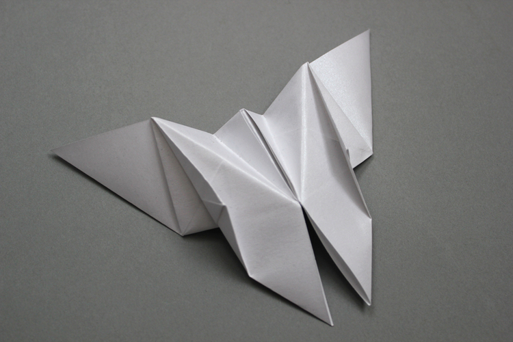Foldability - Butterfly.jpeg
