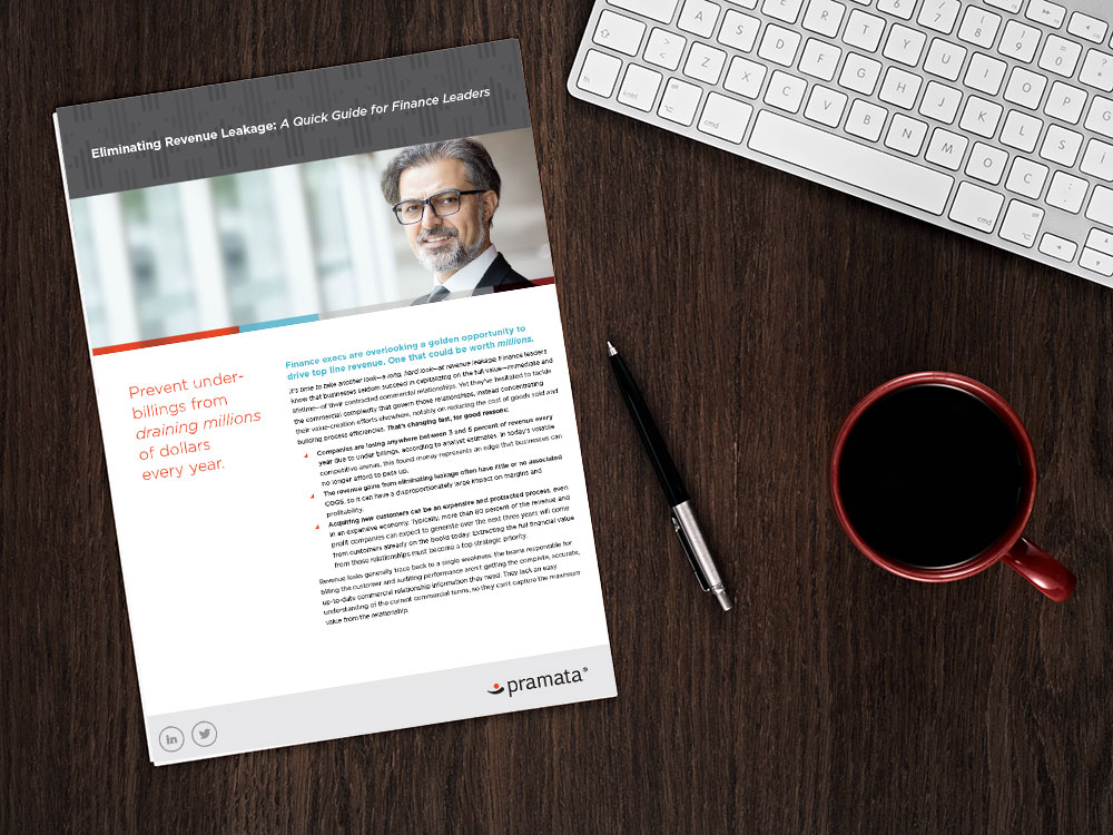 VIEW NOW:    Eliminating Revenue Leakage: A Quick Guide for Finance Leaders