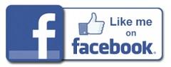 Like FB Icon 240.jpg
