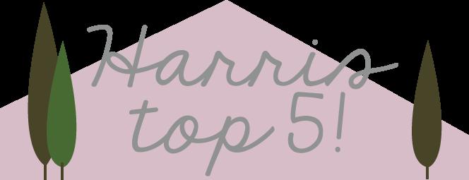 Top5_2.fw.png