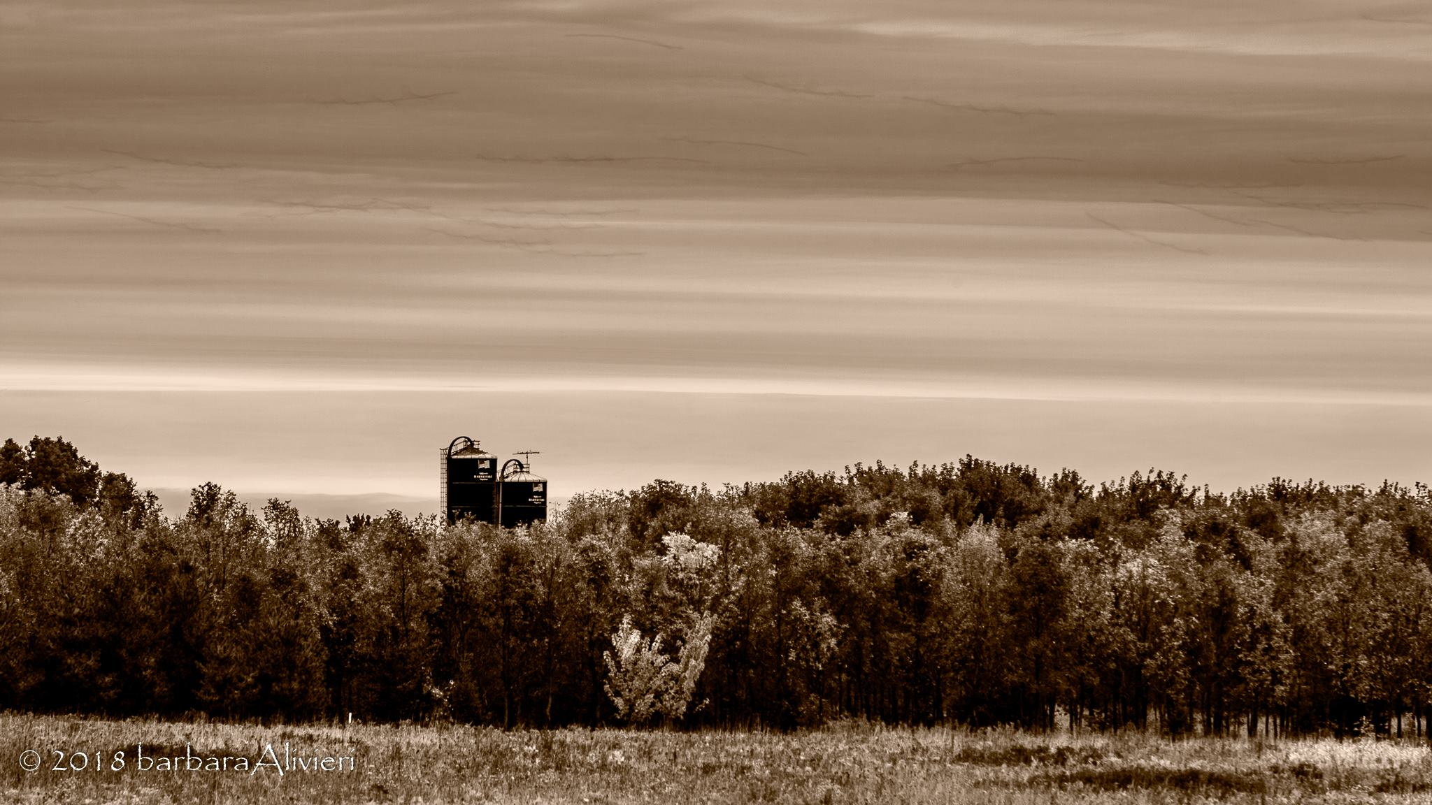 Silos from a farm northeast of where I was staying.