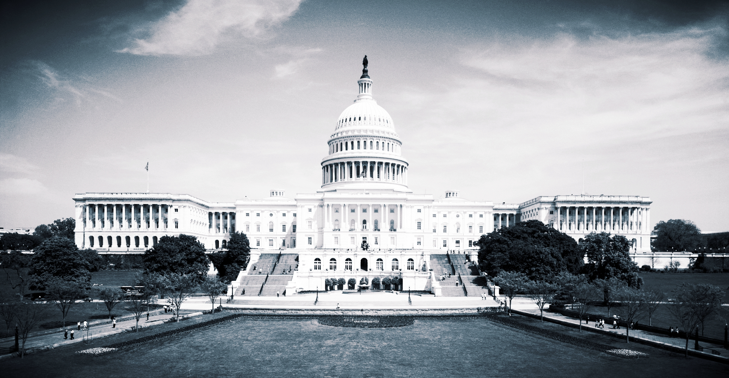 Government Services -
